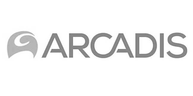 Arcadis : Branding & Positioning Rail Division